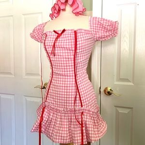 Strawberry Shortcake costume -Adult